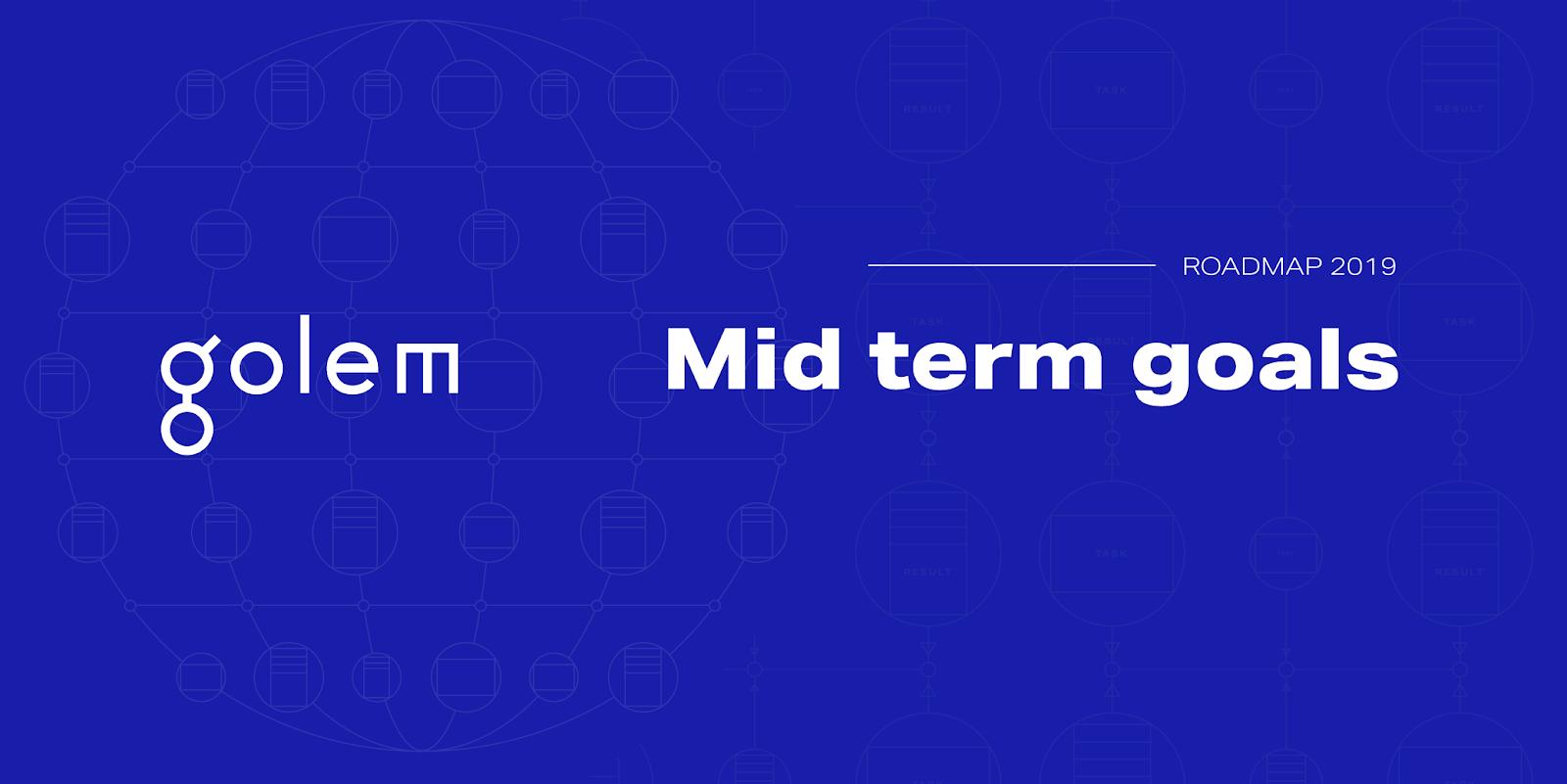 2019 Mid Term Goals Update
